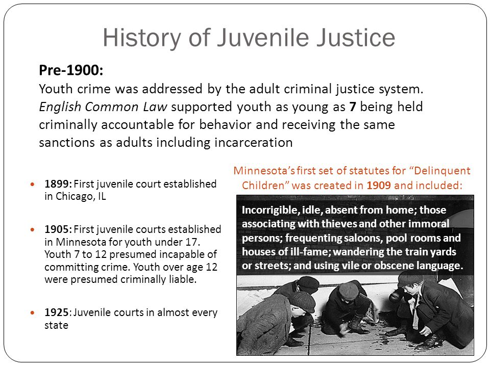 a look at the history of juvenile crimes Juvenile justice: legislative history and current legislative issues juvenile crime legislative history and current legislative issues.