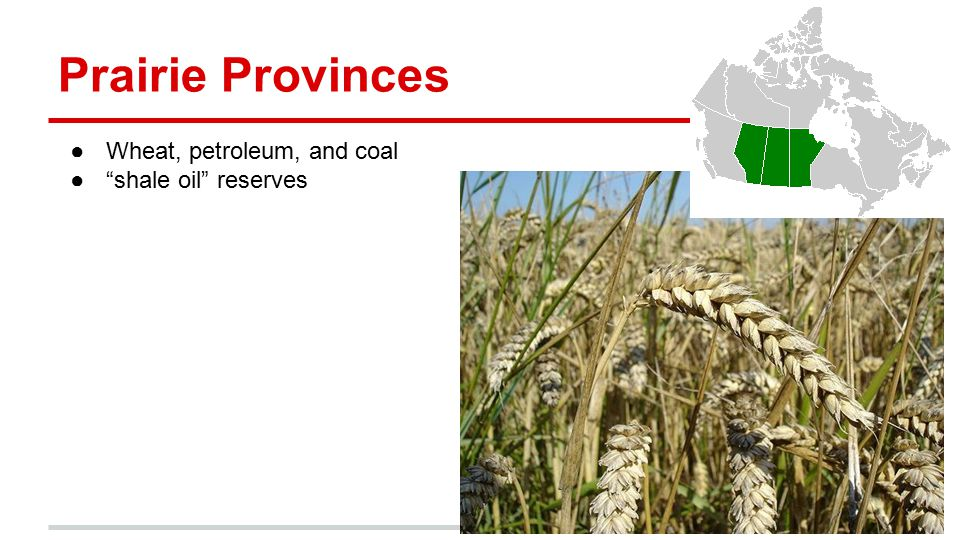 Prairie Provinces Wheat, petroleum, and coal shale oil reserves