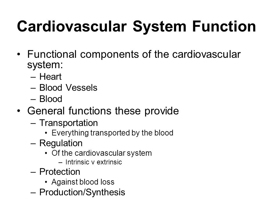 function of the cardiovascular system Your heart is a pump it's a muscular organ about the size of your fist and located slightly left of center in your chest together, your heart and blood vessels make up your cardiovascular.
