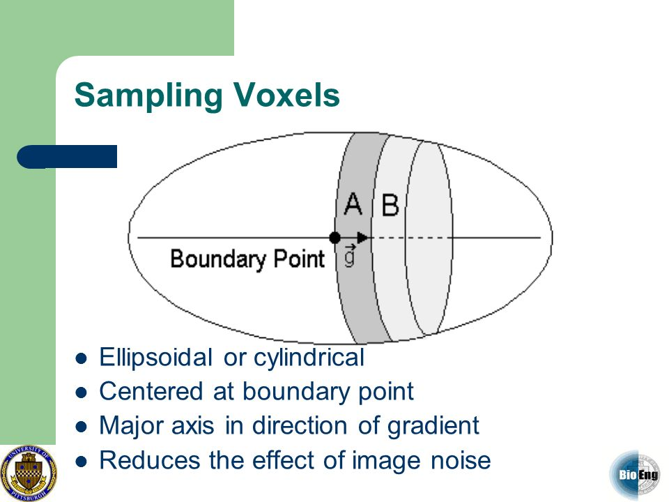 Sampling Voxels Ellipsoidal or cylindrical Centered at boundary point
