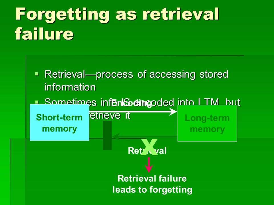 forgetting memory processes In the following, we will explore the role of memory in vocabulary acquisition  process in more detail, with the fact that committing of information.