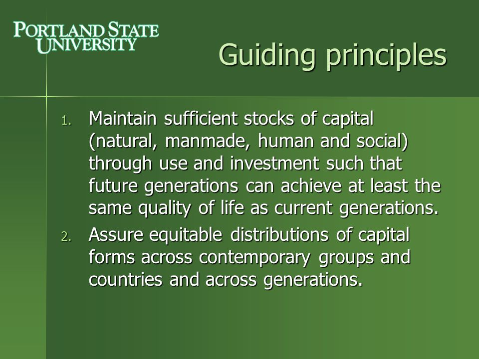 sustainability goals and guiding principles