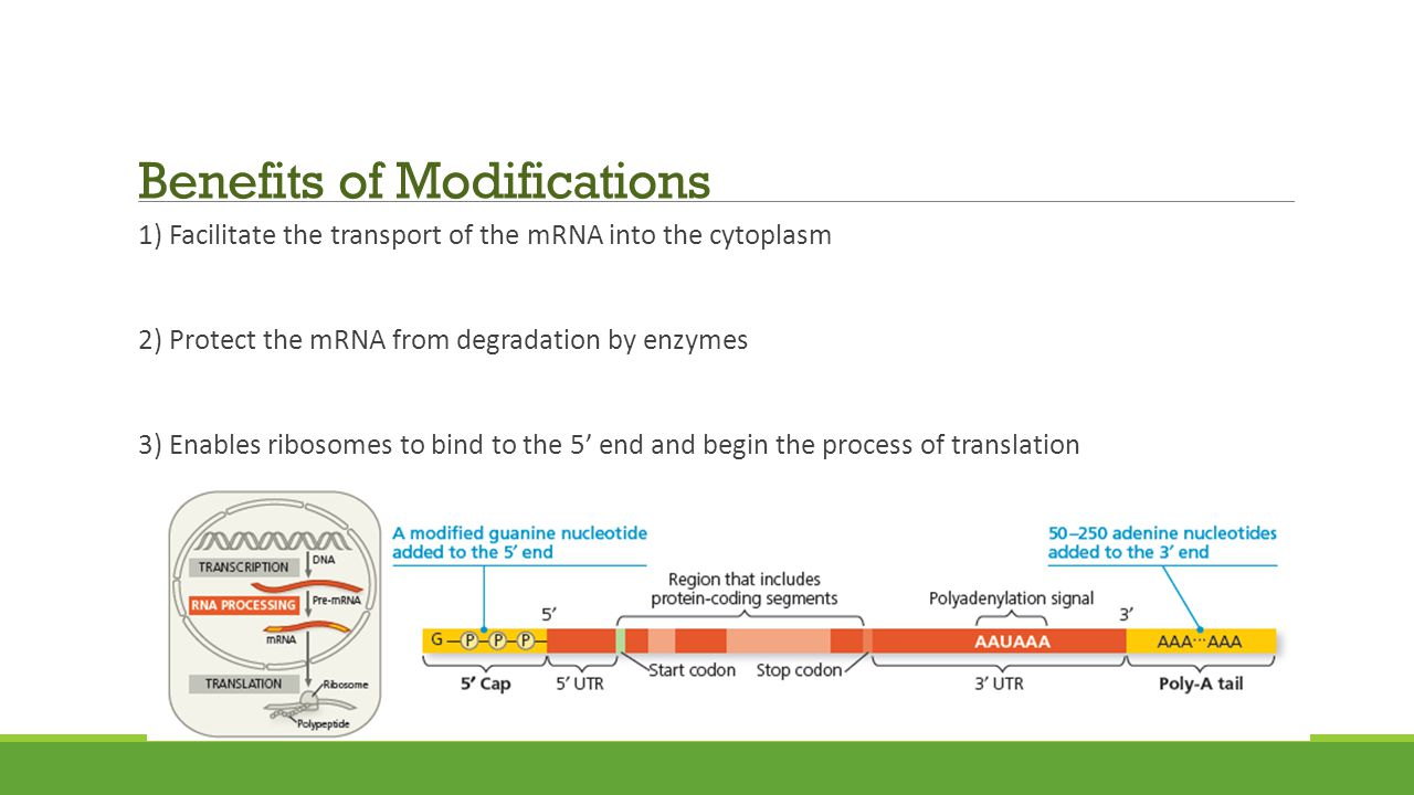 Benefits of Modifications
