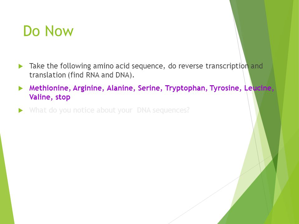 Dna transcription and translation ppt download 76 do malvernweather Choice Image