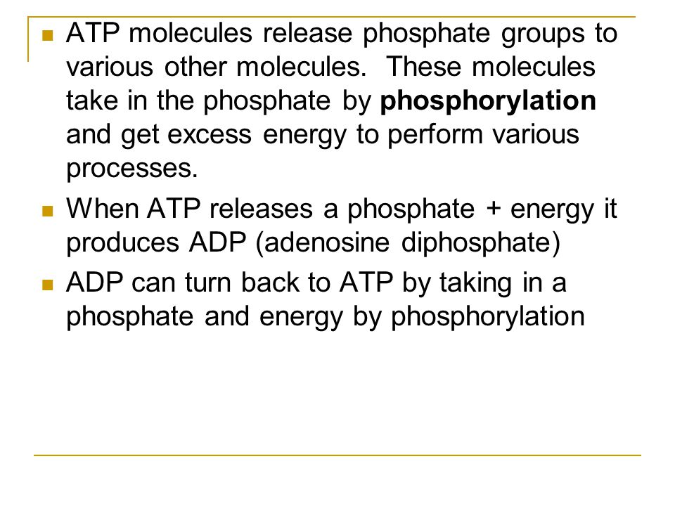 ATP molecules release phosphate groups to various other molecules