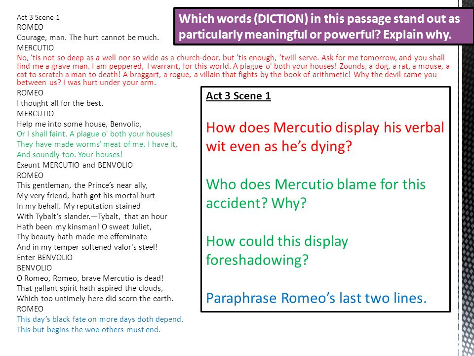 mercutio a memorable man of words Essay sample on dear wayne topics specifically  separately the words explain mercutio's,  their attention towards this important scene is to make it memorable.