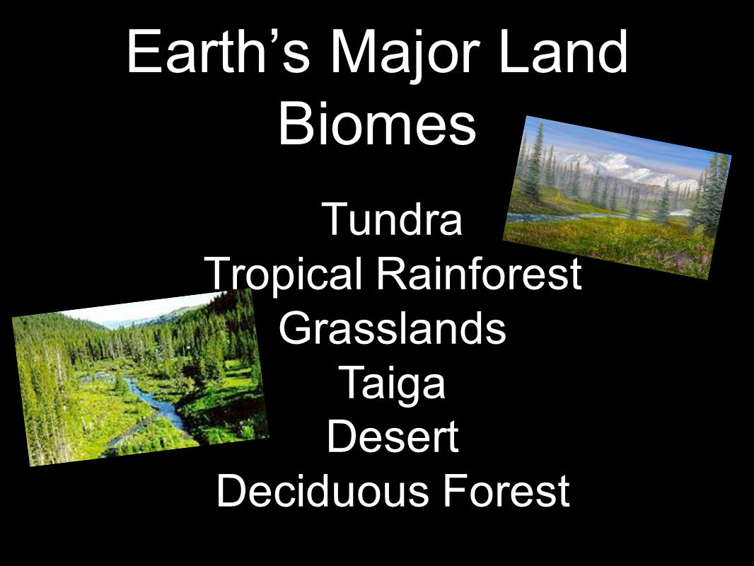 Earth's Major Land Biomes