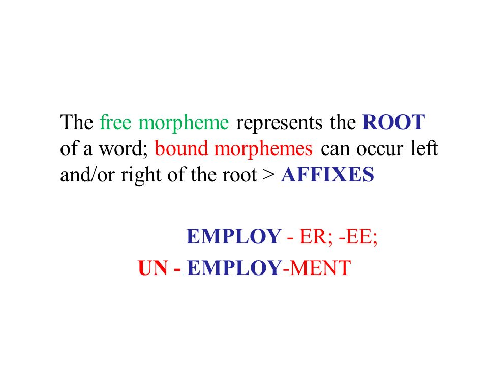 The free morpheme represents the ROOT of a word; bound morphemes can occur left and/or right of the root > AFFIXES EMPLOY - ER; -EE; UN - EMPLOY-MENT