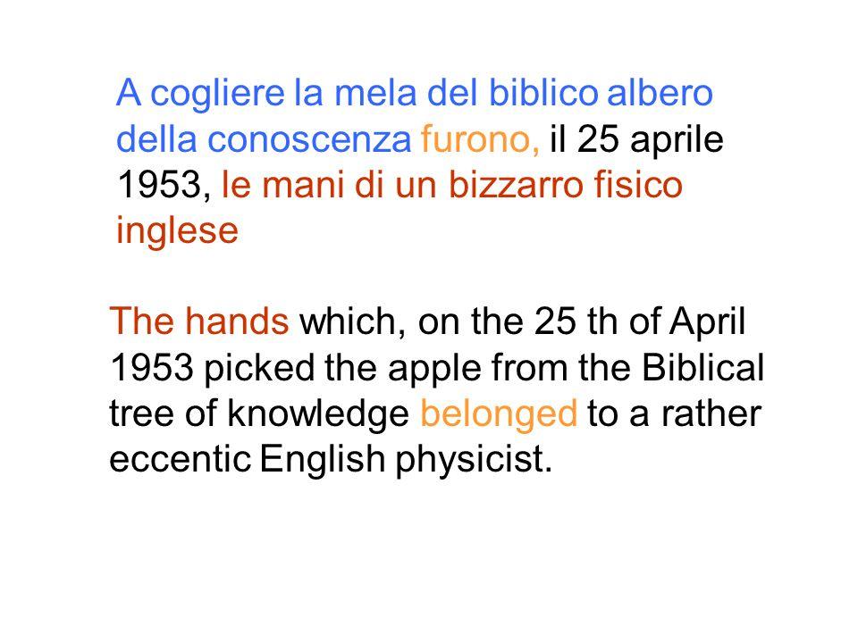 A cogliere la mela del biblico albero della conoscenza furono, il 25 aprile 1953, le mani di un bizzarro fisico inglese