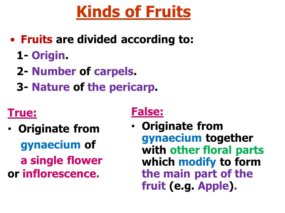 Kinds of Fruits Fruits are divided according to: 1- Origin.