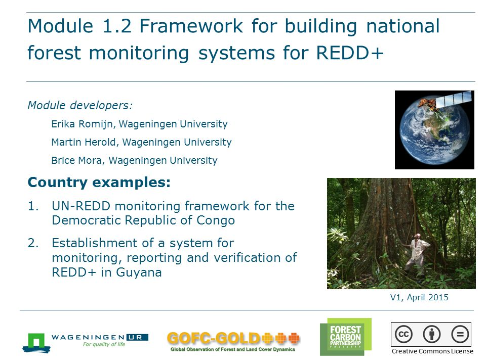 Module 1.2 Framework for building national forest monitoring systems for REDD+