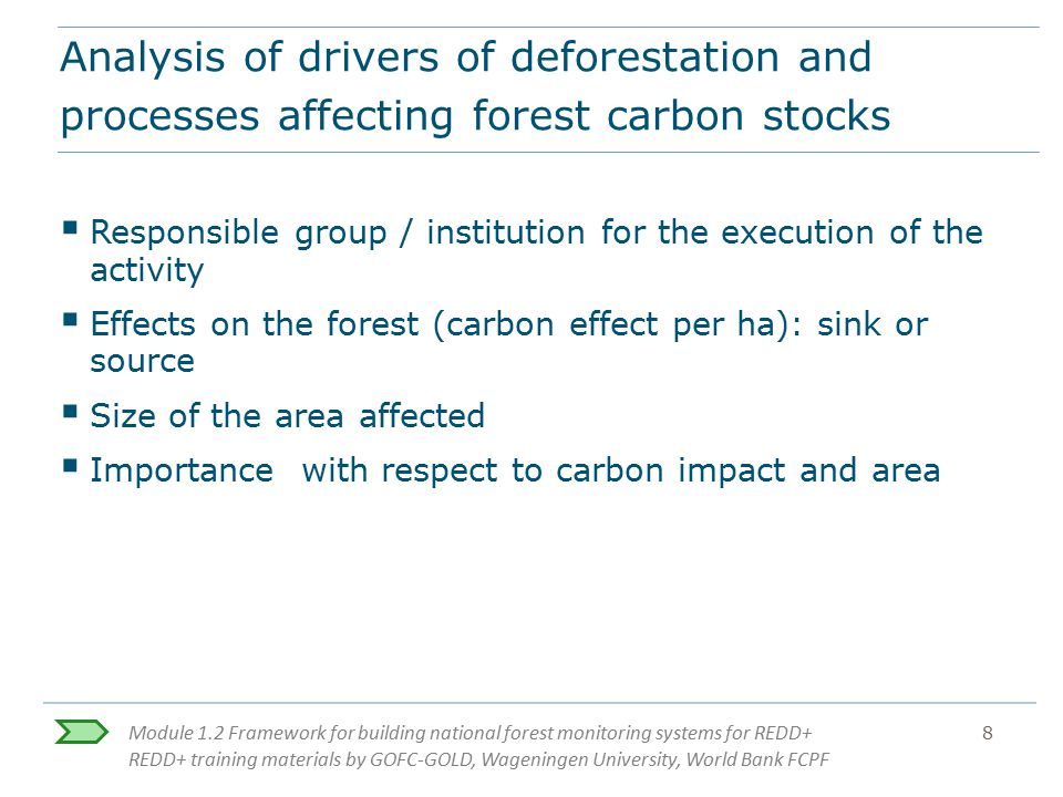 Analysis of drivers of deforestation and processes affecting forest carbon stocks