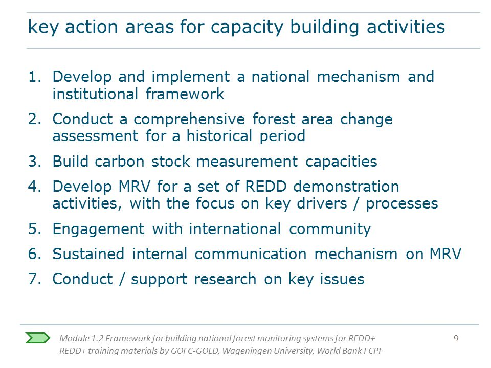 key action areas for capacity building activities