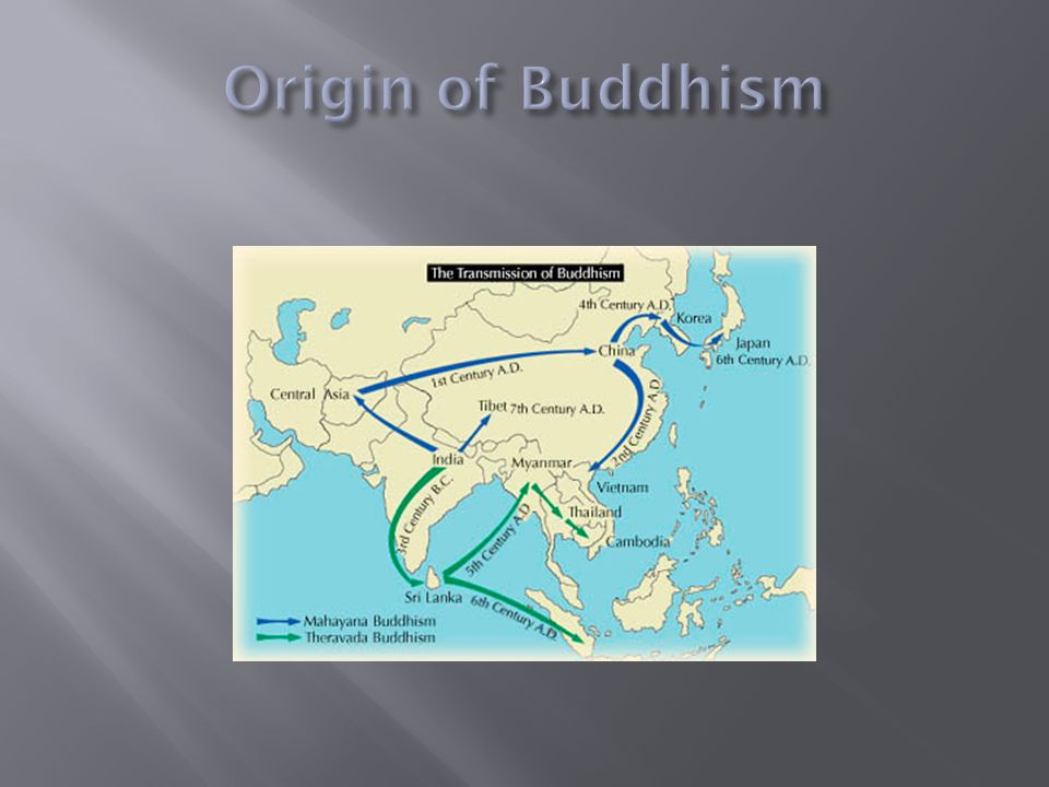 buddhism and the origin of life In fact, the origins of the universe and life in general weren't the focus of the buddha's teaching he was more interested in teaching others about the origin of suffering, how to resist attachment/clinging, and generating loving-kindness for all beings.