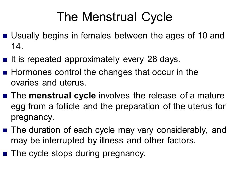 The Menstrual Cycle Usually begins in females between the ages of 10 and 14. It is repeated approximately every 28 days.