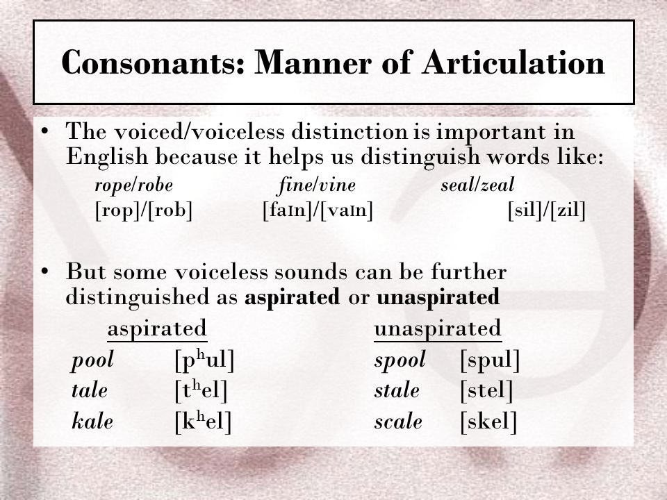 Consonants: Manner of Articulation