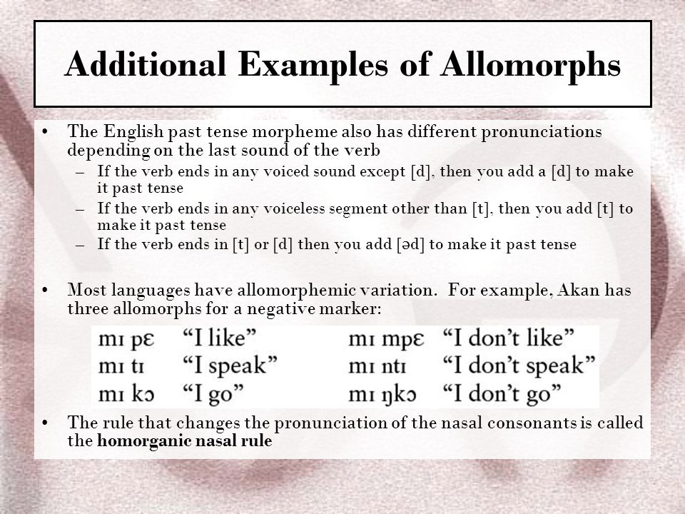 Additional Examples of Allomorphs