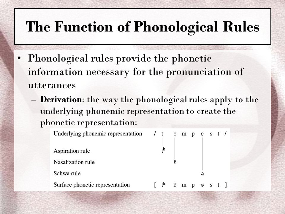 The Function of Phonological Rules