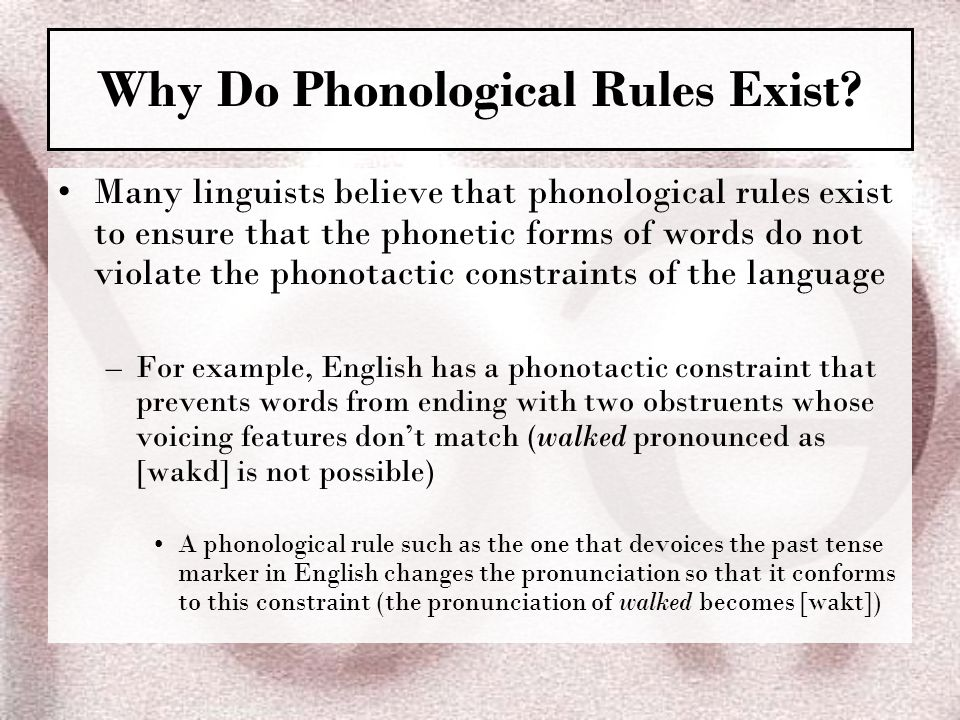 Why Do Phonological Rules Exist