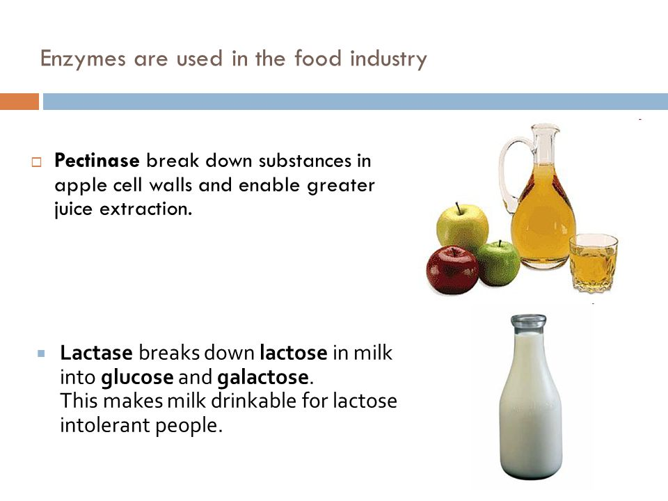 Enzymes are used in the food industry