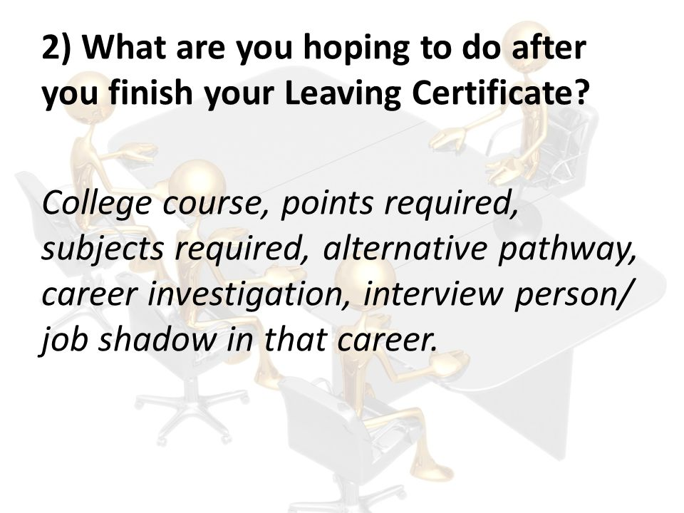 2) What are you hoping to do after you finish your Leaving Certificate