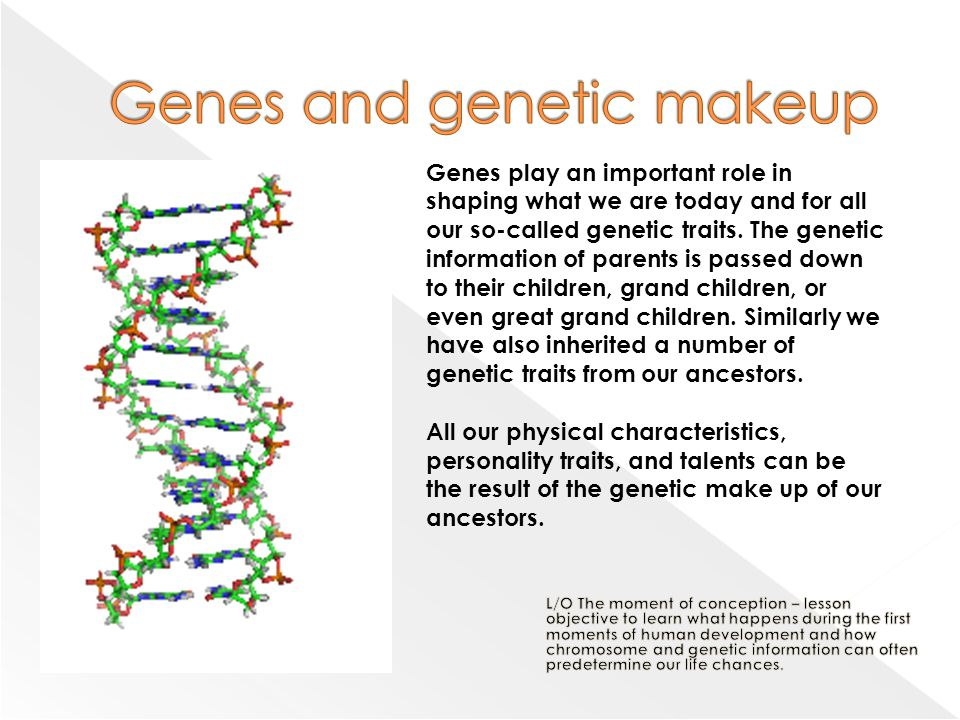 the importance of genetic engineering in todays life To understand why technology is so important today, read on follow us:  space exploration has gone on to explore extraterrestrial life genetic research has revealed how various traits or even hereditary diseases are transferred across generations processes like cloning and genetic engineering are attempting to alter traits in individuals.