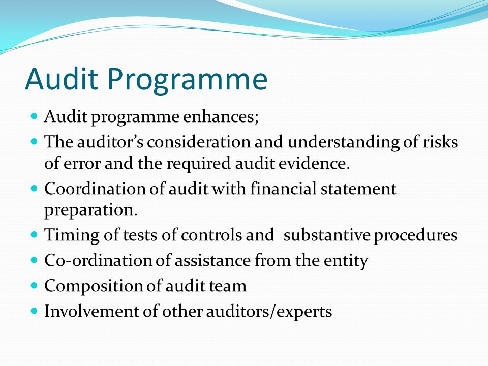 Audit Programme Audit programme enhances;