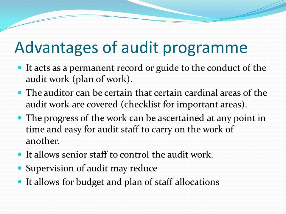 Advantages of audit programme