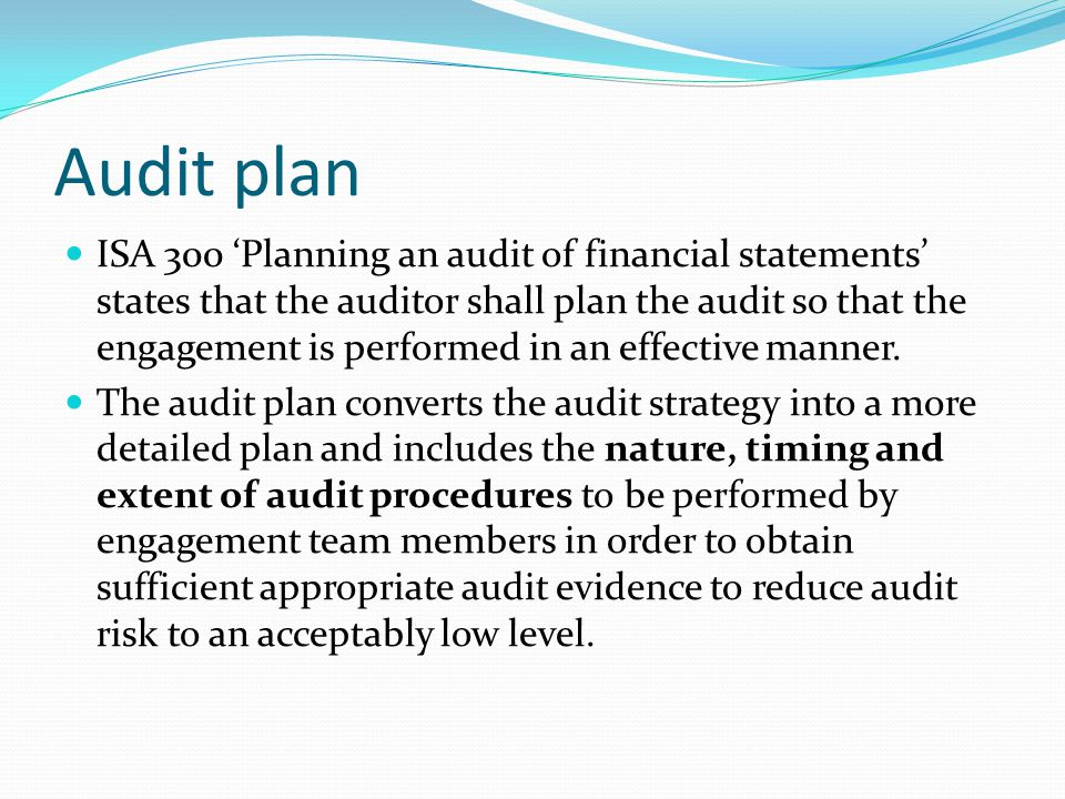 planning an audit of financial statements pdf