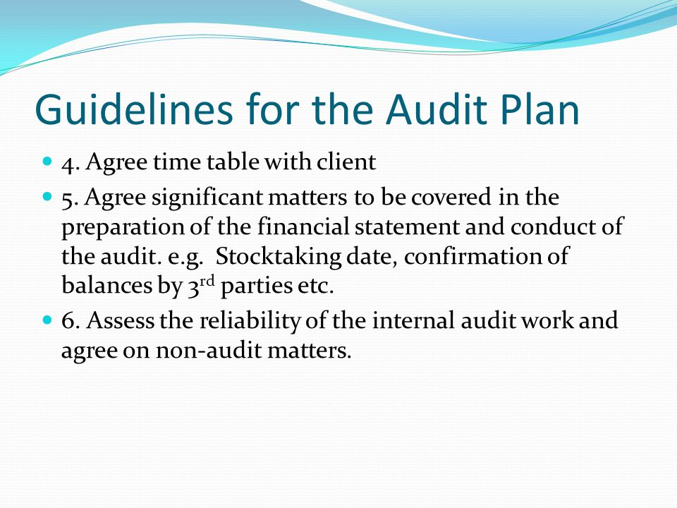 Guidelines for the Audit Plan