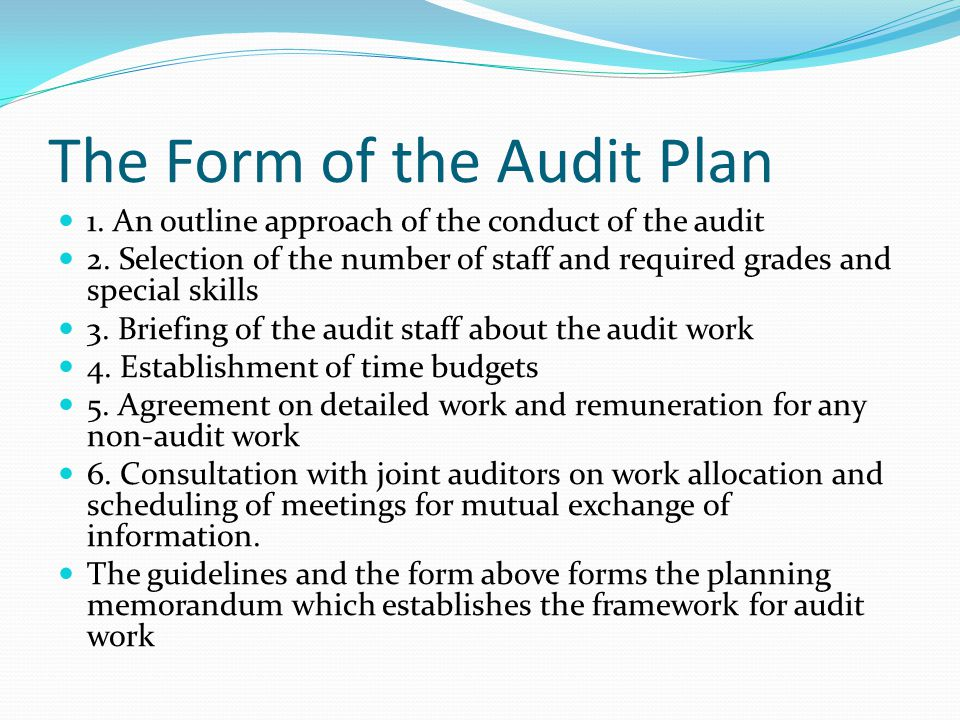 The Form of the Audit Plan