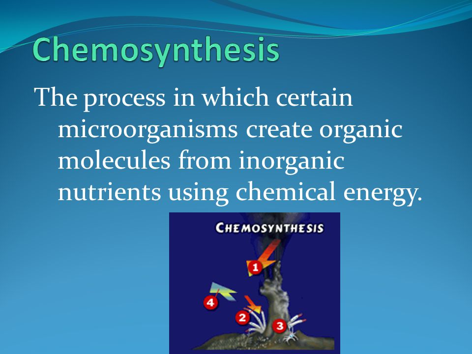Chemosynthesis The process in which certain microorganisms create organic molecules from inorganic nutrients using chemical energy.