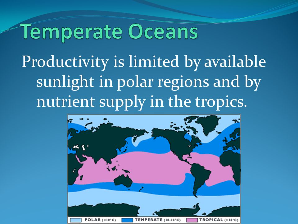 Temperate Oceans Productivity is limited by available sunlight in polar regions and by nutrient supply in the tropics.