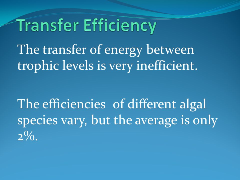 Transfer Efficiency The transfer of energy between trophic levels is very inefficient.