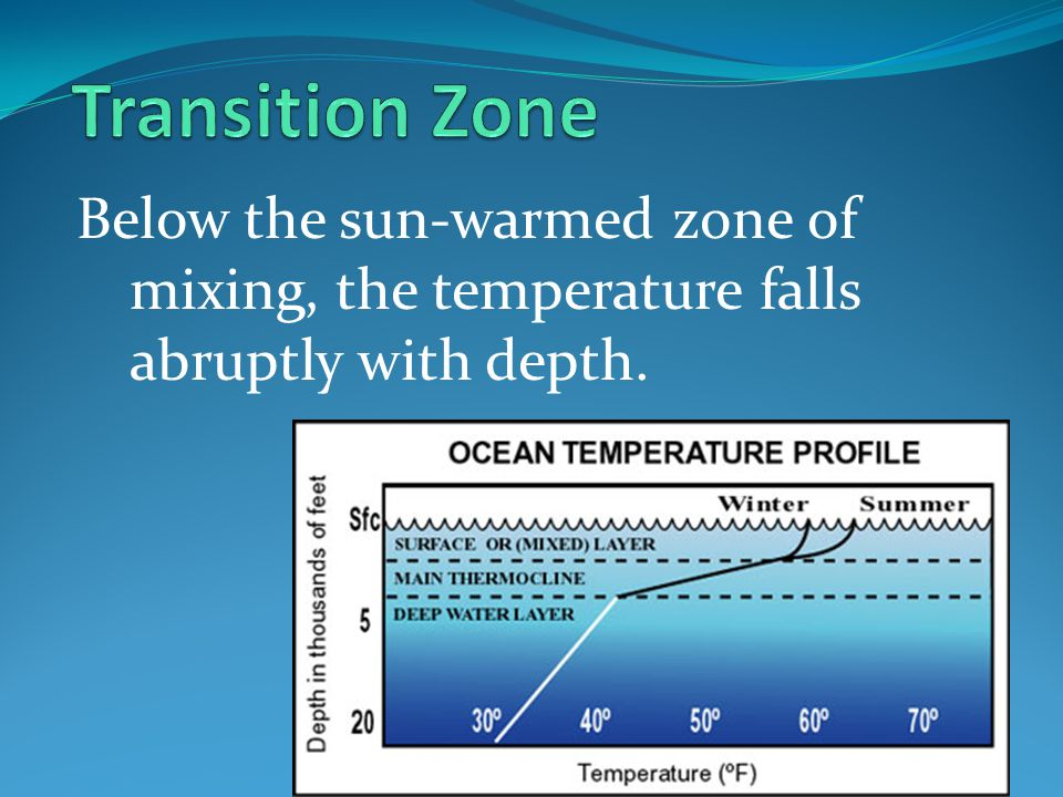 Transition Zone Below the sun-warmed zone of mixing, the temperature falls abruptly with depth.