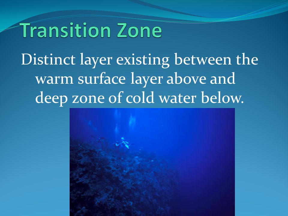 Transition Zone Distinct layer existing between the warm surface layer above and deep zone of cold water below.