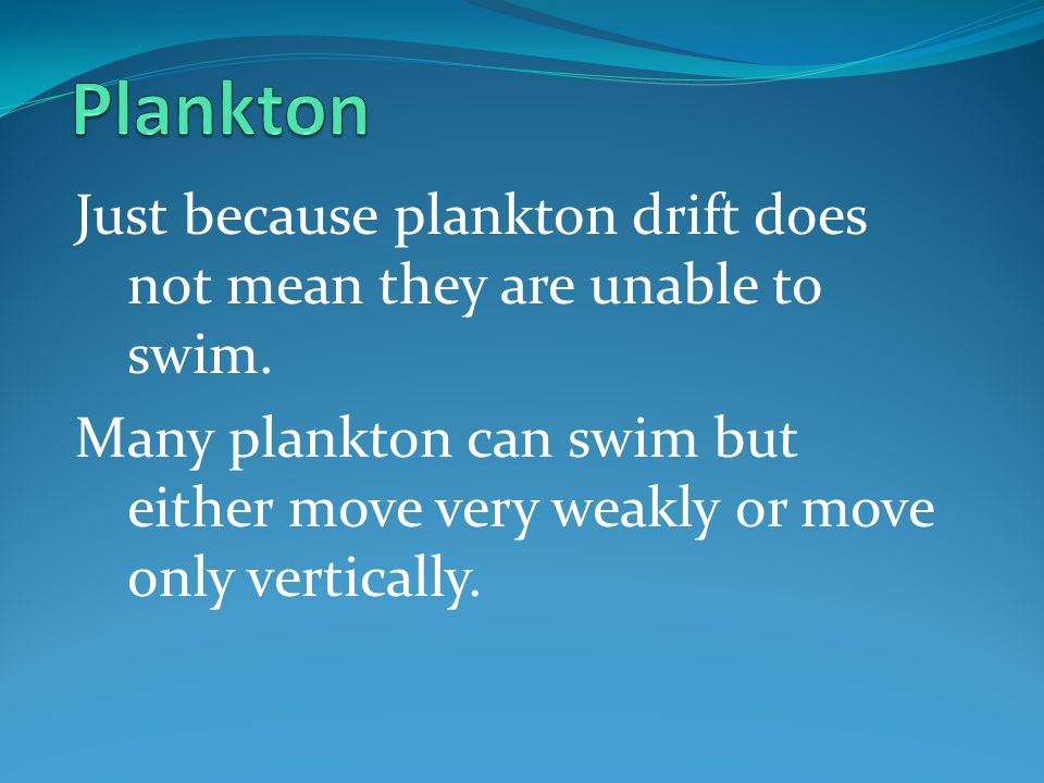 Plankton Just because plankton drift does not mean they are unable to swim.