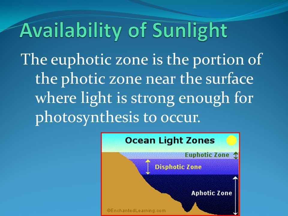 Availability of Sunlight