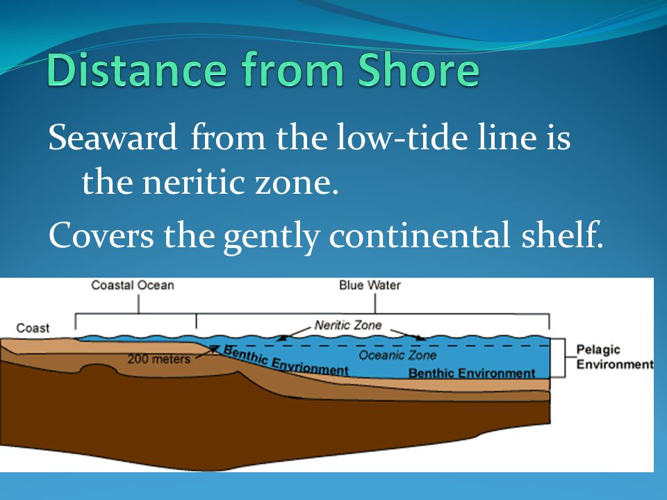 Distance from Shore Seaward from the low-tide line is the neritic zone.