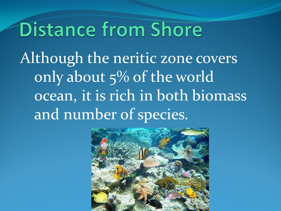 Distance from Shore Although the neritic zone covers only about 5% of the world ocean, it is rich in both biomass and number of species.