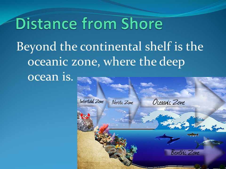 Distance from Shore Beyond the continental shelf is the oceanic zone, where the deep ocean is.