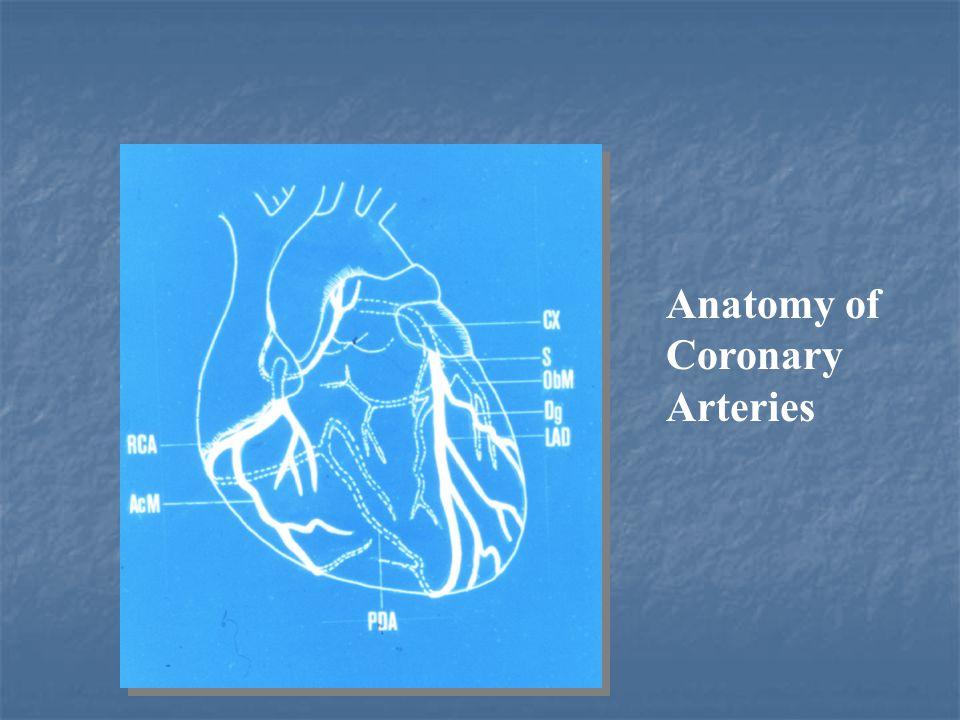 Coronary arteries anatomy ppt