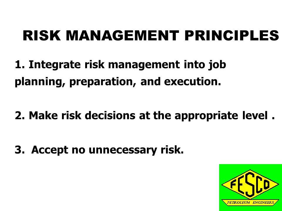 principles of risk management pdf
