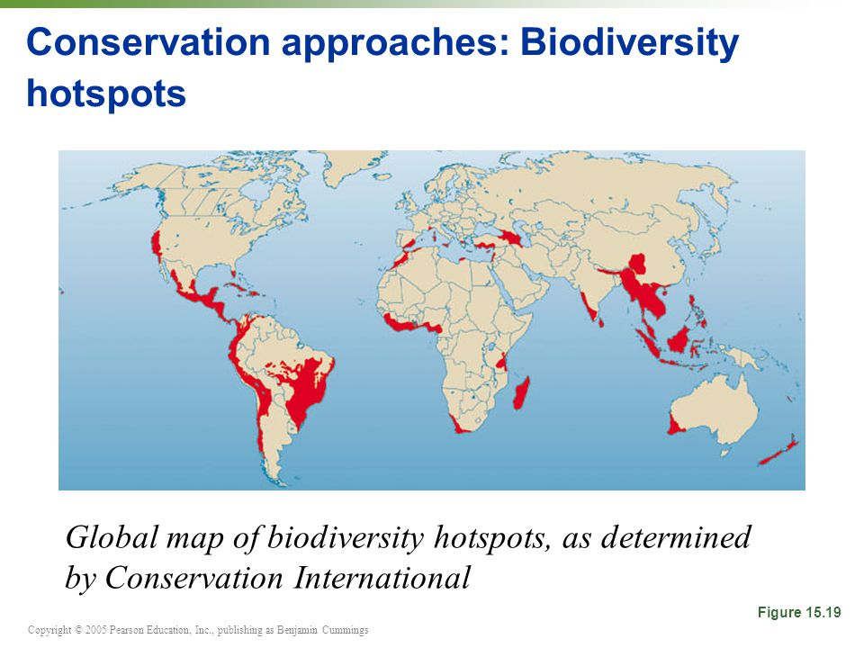 Biodiversity conservation strategy victoria