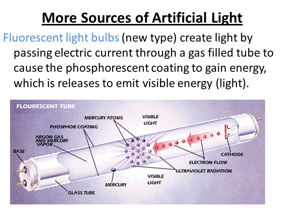 More Sources of Artificial Light