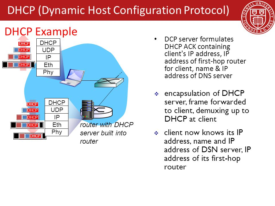 dynamic host configuration protocol dhcp Dynamic host configuration protocol (dhcp) is used to dynamically ( automatically) assign tcp/ip configuration parameters to network devices (ip  address,.