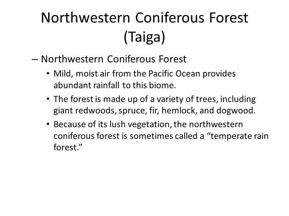 Northwestern Coniferous Forest (Taiga)