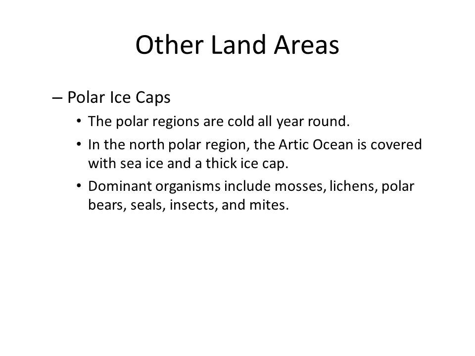 Other Land Areas Polar Ice Caps