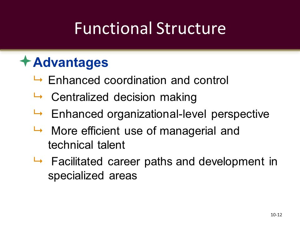 Functional Structure Advantages Enhanced coordination and control