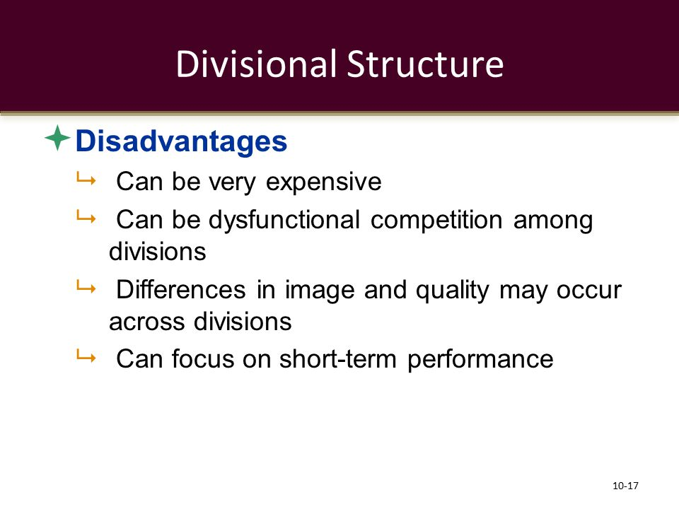 Divisional Structure Disadvantages Can be very expensive